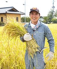 スタッフが稲を持つ