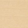 ホワイトメープルのカラーサンプル