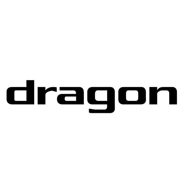 ドラゴンのロゴ