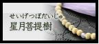 星月菩提樹(せいげつぼだいじゅ)