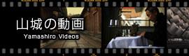 ステテコ山城の紹介動画