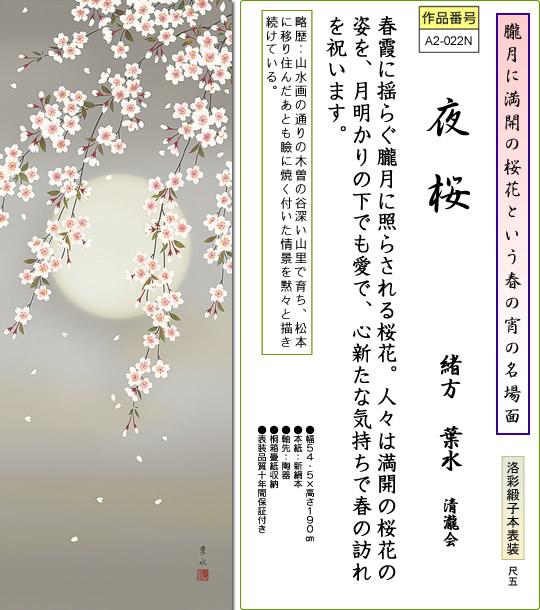 掛け軸-夜桜/緒方葉水(尺五・桐箱・風鎮付き)