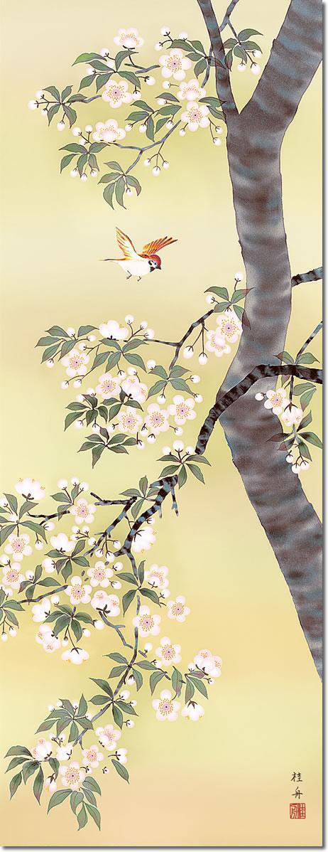掛け軸-桜花に小鳥/長江桂舟(尺五・桐箱・風鎮付き)