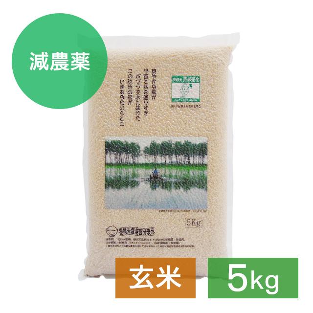 減・あきたこまち  玄米 5kg