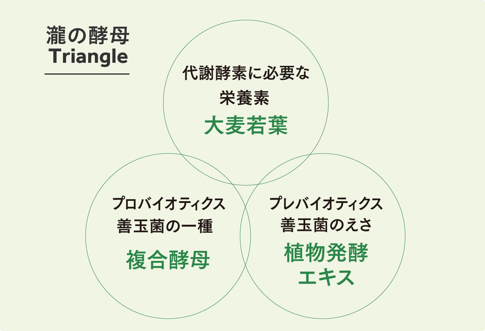 瀧の酵母Triangle