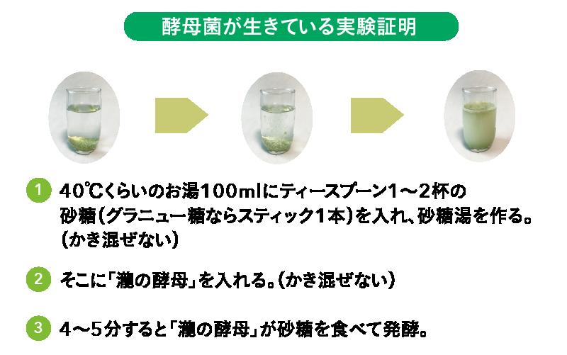 酵母菌が生きている実験証明