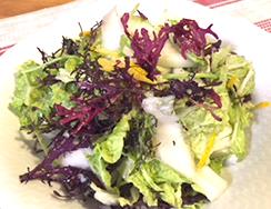モリモリ白菜