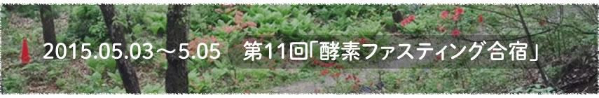 2015.05.03〜05.05 第11回「酵素ファスティング合宿」