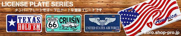 USA製ライセンスプレート