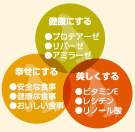 AZドッグフードの三要素