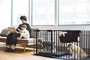 Recommended dog playpen