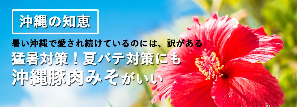 沖縄の知恵