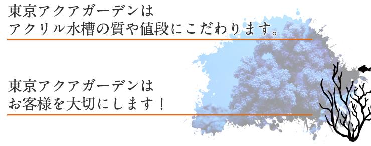 東京アクアガーデンはアクリル水槽の質や値段にこだわります。東京アクアガーデンはお客様を大切にします!