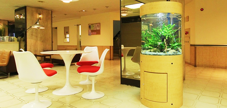 インテリア円柱水槽 淡水魚1