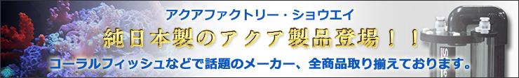 アクアファクトリー・ショウエイ、純日本製のアクア製品登場