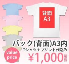 激安プリントセットバックA3内フルカラー1000円ボディ込み