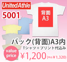 激安プリントセットバックA3内フルカラー1200円5001ボディ込み