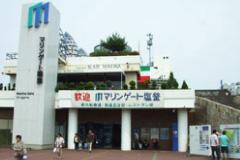 松島蒲鉾本舗 マリンゲート塩釜店