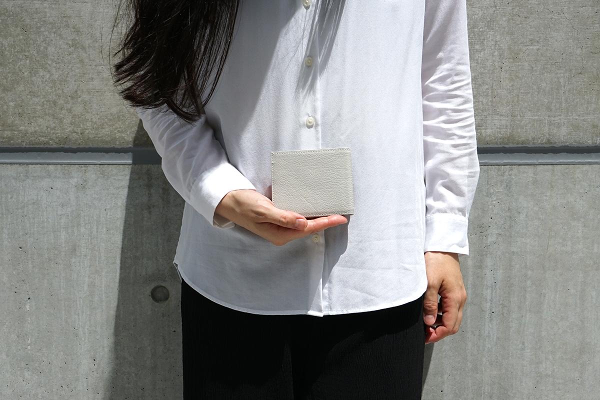 ポケットウォレット ミニの収納力のモデル画像2