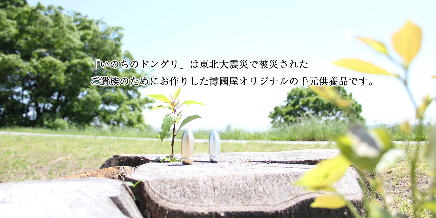 手元供養いのちのどんぐりは東日本大震災で被災されたご遺族のためにお作りした手元供養品