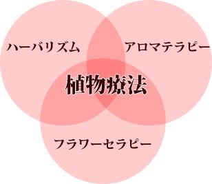 """植物療法とは、""""ハーバリズム""""""""アロマテラピー""""""""フラワーセラピー""""の3つのカテゴリーを統合したもの"""