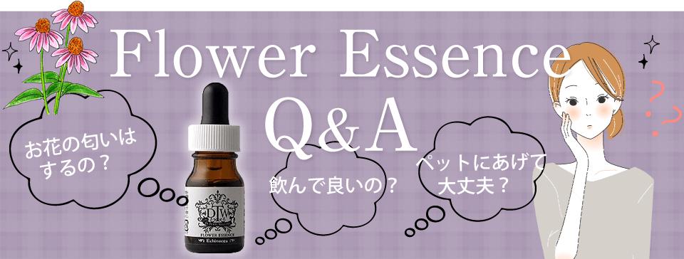フラワーエッセンス Q&A お花の匂いはするの? 飲んで良いの? ペットにあげて大丈夫?