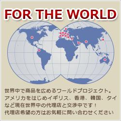 世界16カ国で発売されています