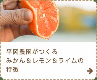 平岡農園がつくるみかん&レモン&ライムの特徴
