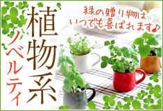 植物系ノベルティ