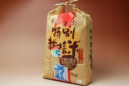 無農薬玄米(ササニシキ玄米)