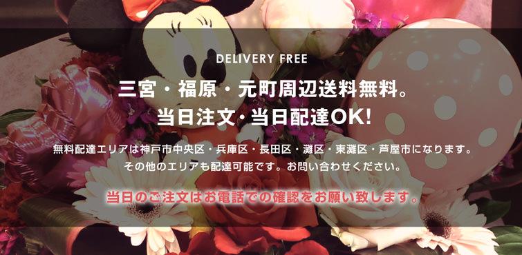 神戸三宮・元町・福原周辺配達無料!当日注文OKです!
