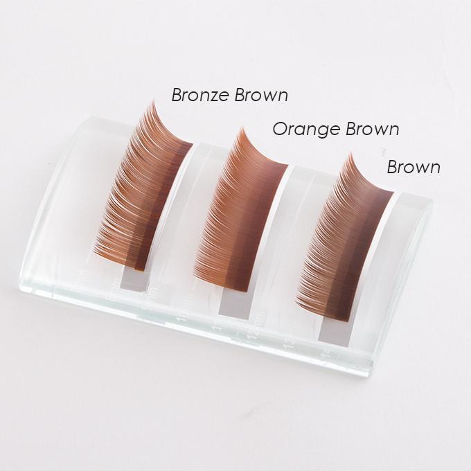 ブラウン3
