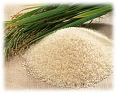 雑穀と合わせているお米は、100%京都府産京都米を使用