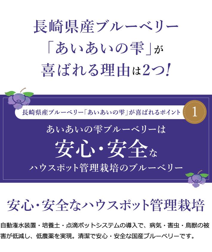長崎県産ブルーベリー「あいあいの雫」が喜ばれる理由は2つ!