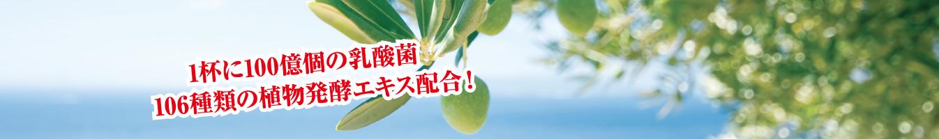 1杯に100億個の乳酸菌 106種類の植物発酵エキス配合!