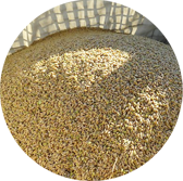 森源のお米