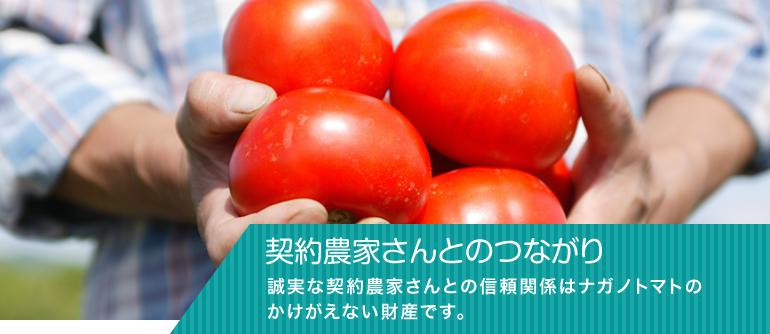 契約農家さんとのつながり誠実な契約農家さんとの信頼関係はナガノトマトのかけがえない財産です