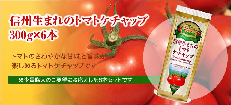 信州生まれのトマトケチャップ トマトのさわやかな甘味と旨味が楽しめるトマトケチャップです。