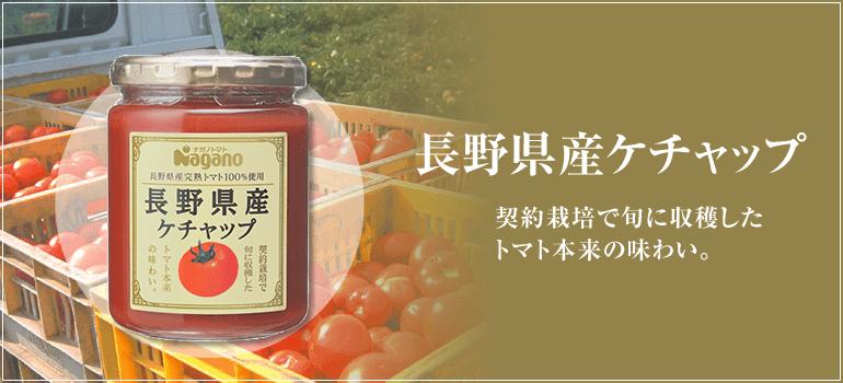 長野県産 ケチャップ