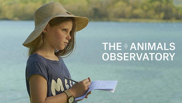 The Animals Observatory ジ アニマルズ オブザーバトリー