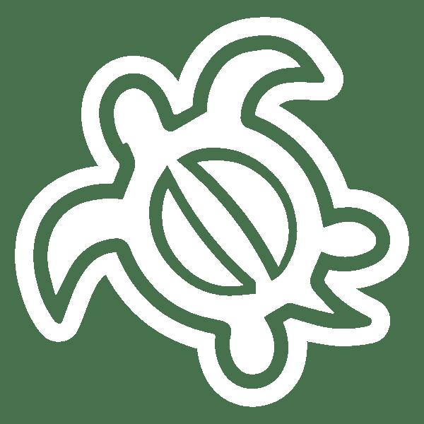 HONU(ウミガメ)