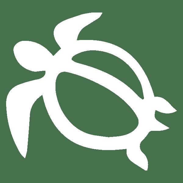 ハワイアンHONU(ウミガメ)