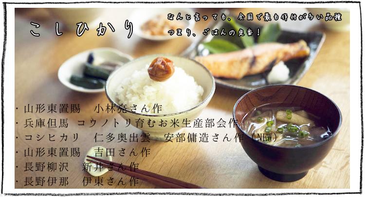 お米の内祝い・お祝いギフトやお米ギフトに大人気のコシヒカリ