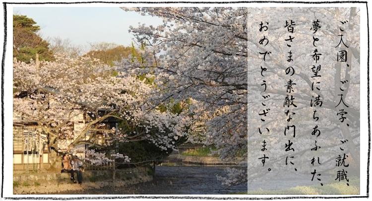 ご入園・ご入学・ご就職の内祝い・お祝い向けお米ギフト