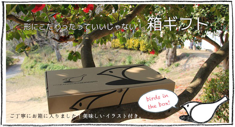 おしゃれなギフトボックス入り無農薬米ギフト「IRODORI GIFT BOX」