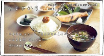 内祝い・お祝いやマクロビオティック玄米などの コシヒカリ