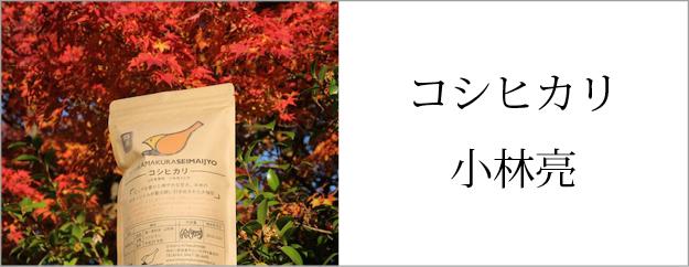 コシヒカリ 山形東置賜 小林亮さん作