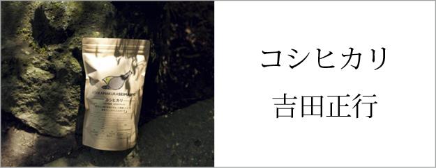 コシヒカリ 山形東置賜 吉田正行さん作
