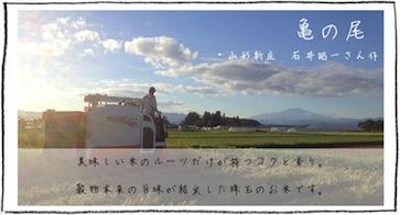 亀の尾 山形新庄 石井昭一さん作