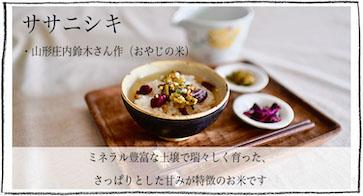 ササニシキ 山形庄内 鈴木孝征さん作(おやじの米)